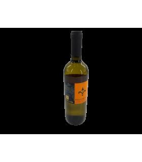 Vein KGT TERRE di CHIETI PECORINO 2018 valge/kuiv 12% 75cl